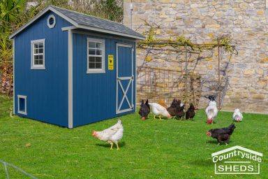blue chicken coop shed design ideas