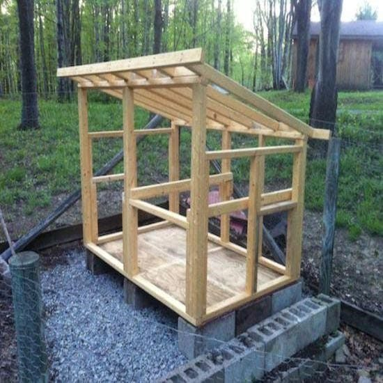 how many chickens can fit in a 8x8 chicken coop