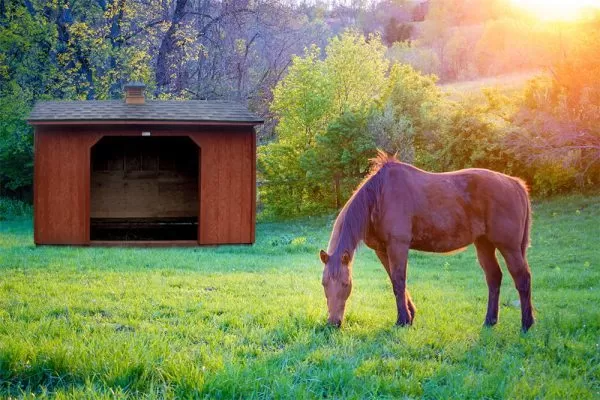 storage sheds for sale in wallowa or