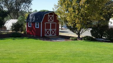 10x16 tall barn in walla walla wa