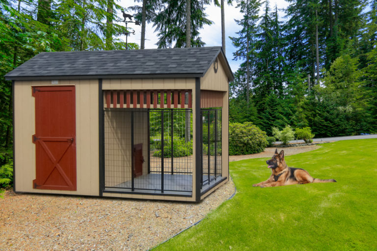 animal sheds dog shelter in or