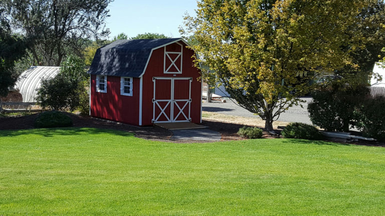 rent to own sheds in oregon
